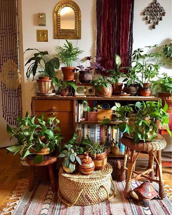 Plantas na decoração boho