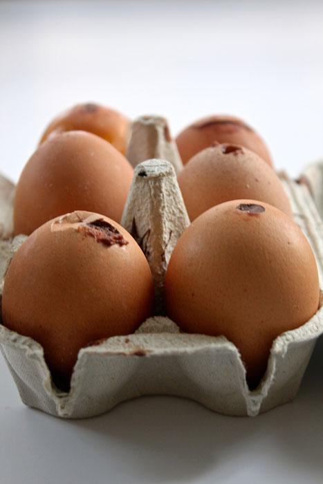 como decorar cascas de ovos para Páscoa