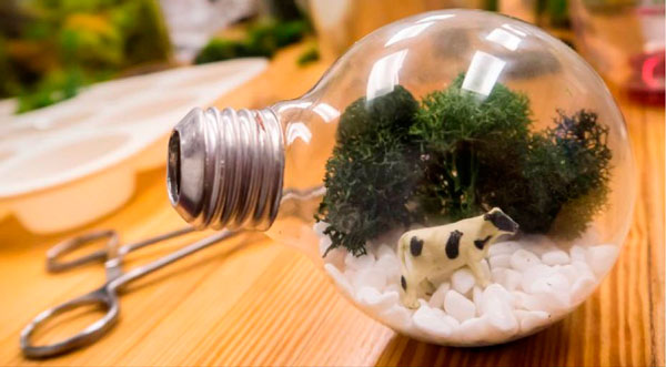 lâmpadas recicladas