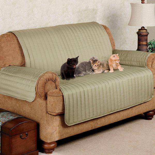sofá com animais de estimação