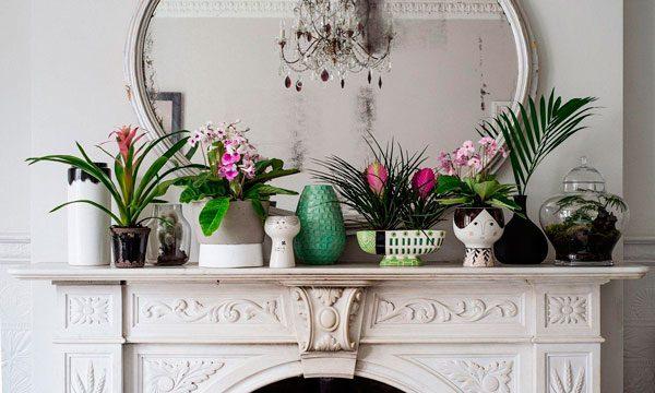 sustentabilidade na decoração