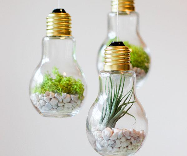 reaproveitando lâmpadas