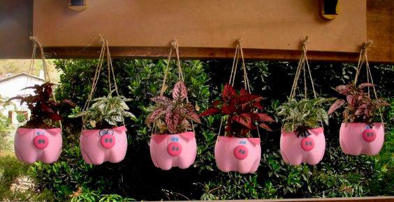 Pequeno jardim com garrafa pet em casa