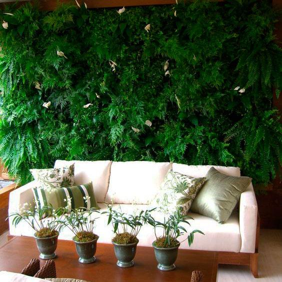 paredes vivas na decoração