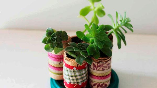 pequeno jardim em casa