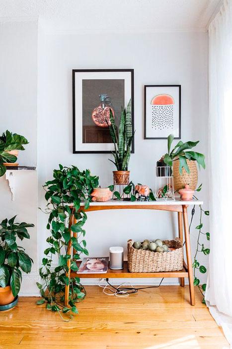 apartamento rústico
