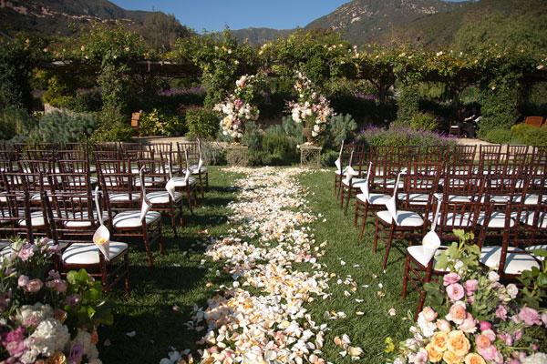 caminho com petalas de flores