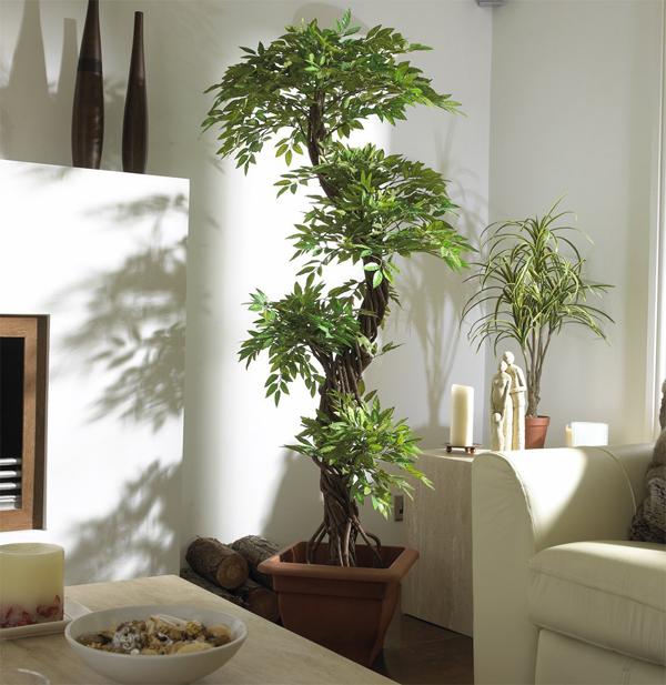 decoração casa alugada