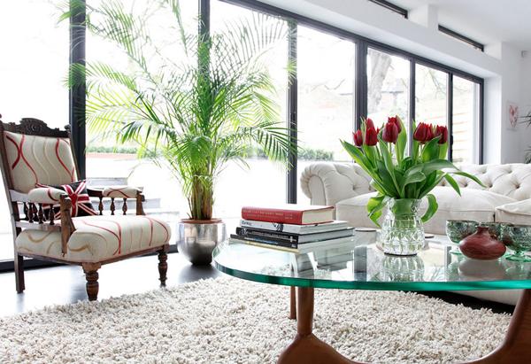vasos de plantas decoração