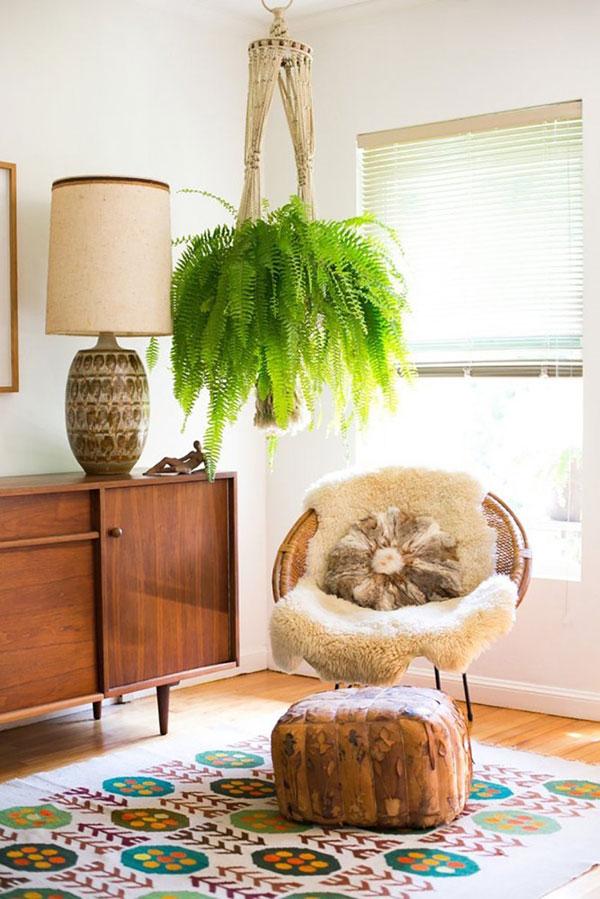 planta suspensa na decoração