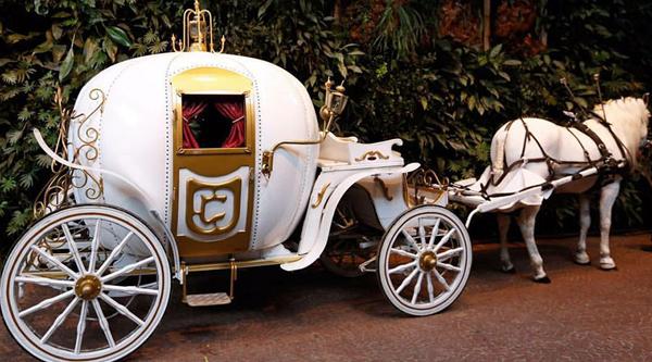carruagem casamento disney