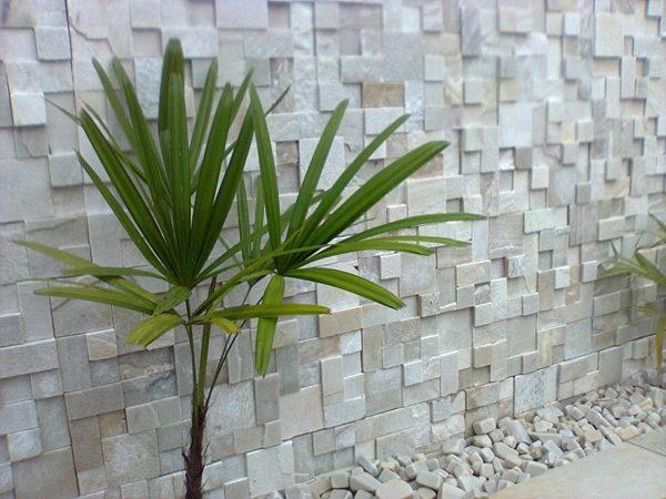parede pedra canjiquinha