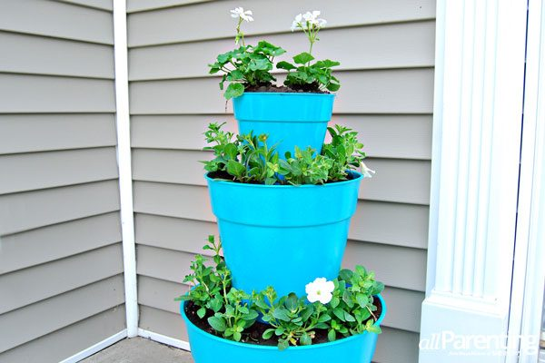 Pote plástico com planta na decoração