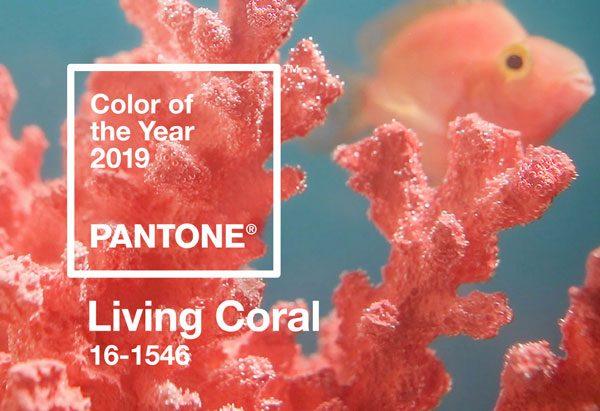 Cor Pantone 2019 - Living Coral