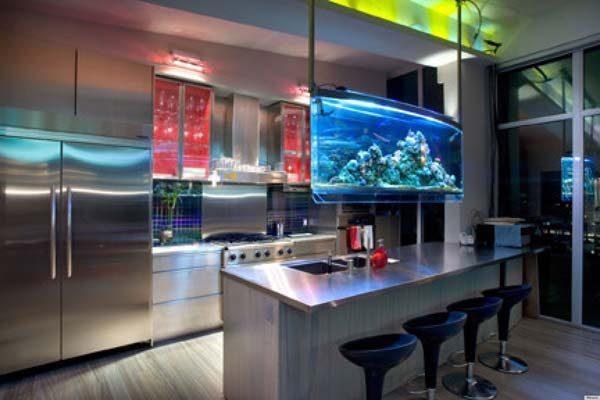 aquário suspenso na cozinha