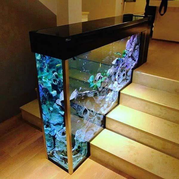 aquário na escada