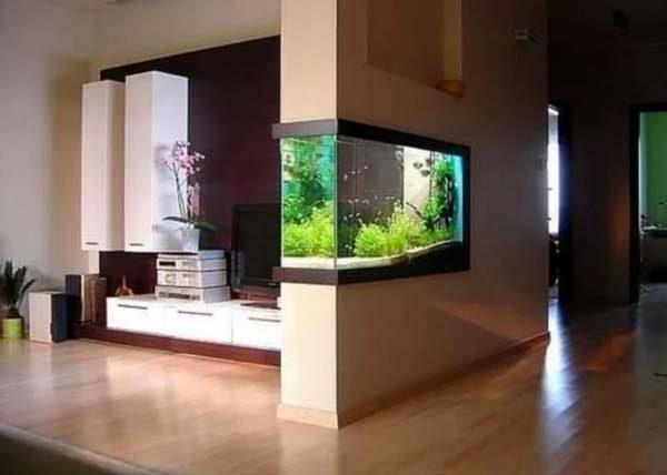 aquário na parede