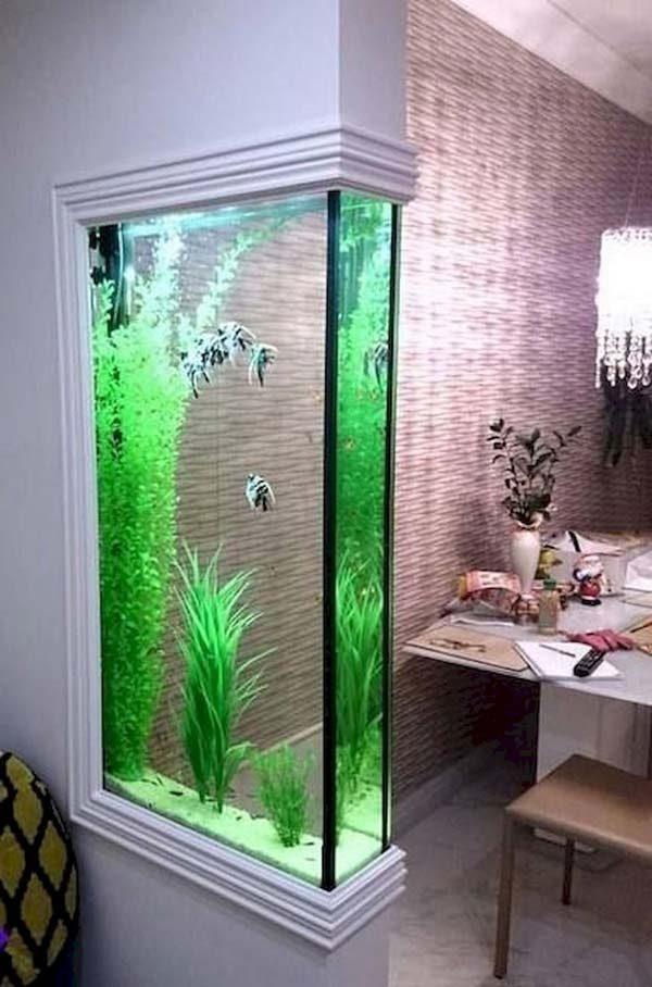 aquário divisor de ambiente