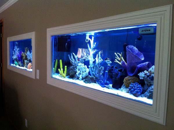 aquários com moldura