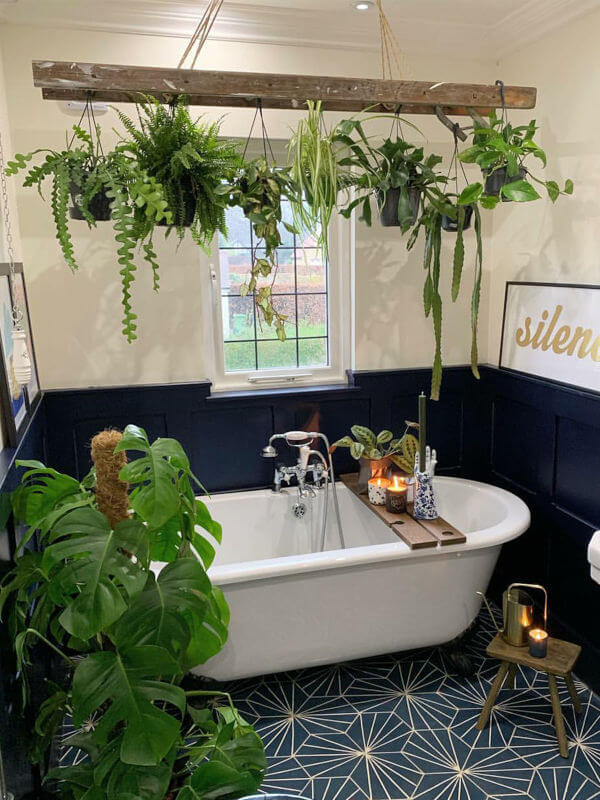 bathroom plant