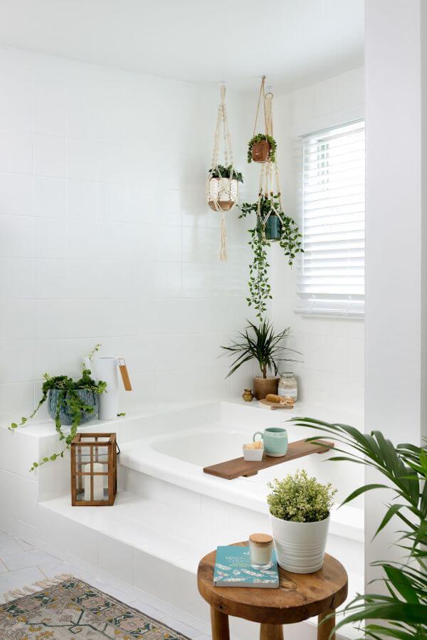 suporte de plantas