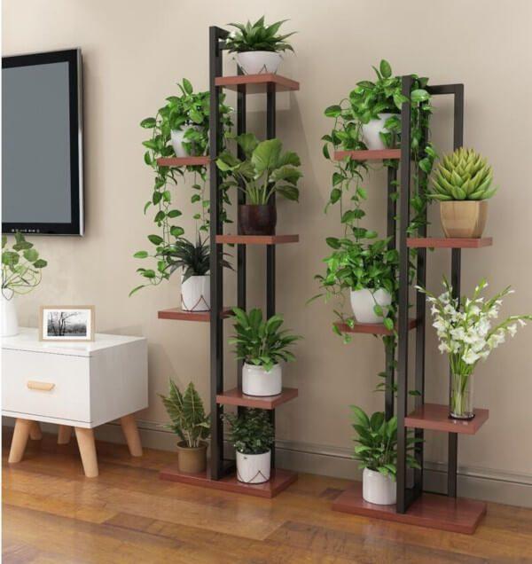 Estantes como suporte para plantas